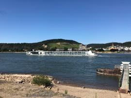 Rheincruiser vor Bad Hönningen